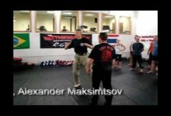 The Maksimtsov's System uses only the natural movements of man. One of them is a wave movement.